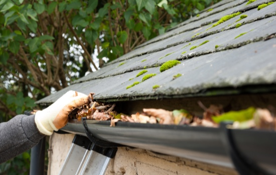 Ottawa S Expert Eavestrough Cleaning Service Glassmate